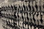 1955 5 productiehal